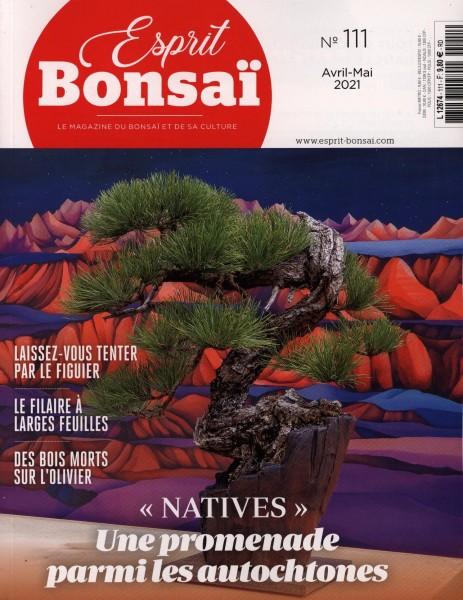 Esprit Bonsai 111/2021