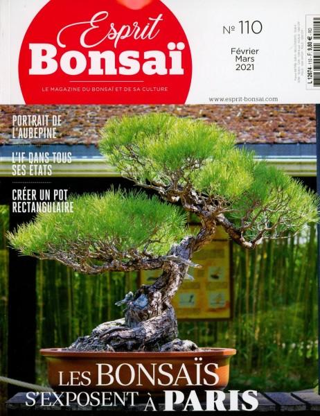 Esprit Bonsai 110/2021